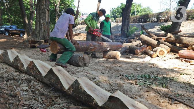 Petugas Dinas Kehutanan Jakarta Barat menyelesaikan pembangunan rumah pohon di kawasan Tomang, Jakarta, Selasa (19/11/2019). Pembangunan taman tersebut dilengkapi dengan rumah pohon untuk menambah ruang bermain anak. (Liputan6.com/Herman Zakharia)