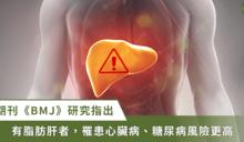 脂肪肝不只損害肝健康!《BMJ》:還會誘發心臟病、糖尿病