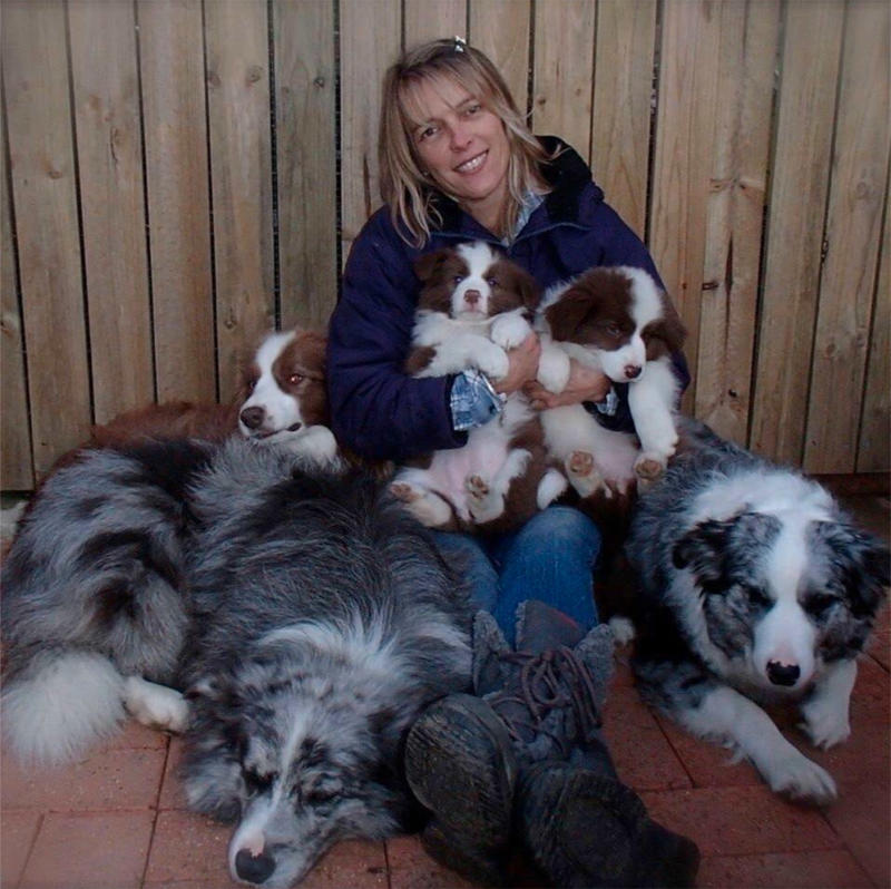 Queensland border collie breeder Michelle Bryant, pictured with the canines, says there is a strong divide about shaving dogs' coats.