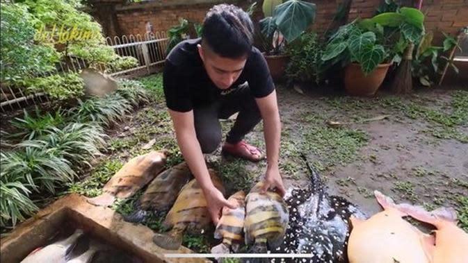 Irfan Hakim bersama ikan peliharaannya