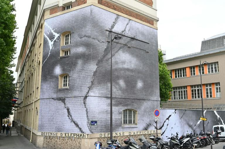 The huge photomontage mural on a Paris wall by French street art star JR of Adama Traore and the black American George Floyd