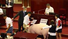 柯文哲施政報告 議員訴求拒絕萊豬(3) (圖)