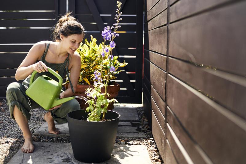 Woman watering flowering plant in backyard