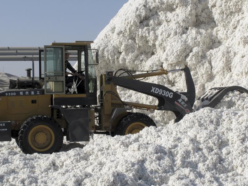 血淚交織的棉產品 人權組織呼籲拒買