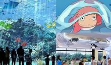 超夯Xpark水族館「4大設施」曝光!電影《崖上的波妞》原型現身、全台首創「企鵝咖啡館」