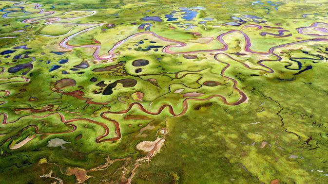 Foto dari udara yang diabadikan pada 28 September 2020 ini menunjukkan pemandangan lahan basah Lhato di Wilayah Konjo, Qamdo, Daerah Otonom Tibet, China barat daya. (Xinhua/Zhan Yan)