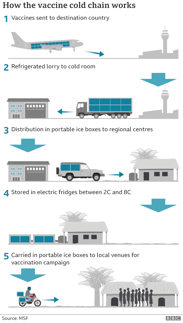 How the vaccine cold chain works: 1. Vaccines shipped to destination country 2. Refrigerated lorry to cold room 3. Distribution in portable ice boxes to regional centres 4. Stored in electric fridges between 2C and 8C 5. Carried in portable ice boxes to local venues for vaccination campaign