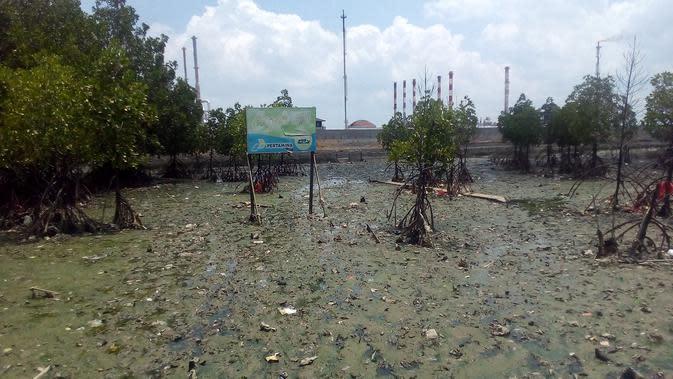 Hakim Kabulkan Gugatan Pencemaran Teluk Balikpapan