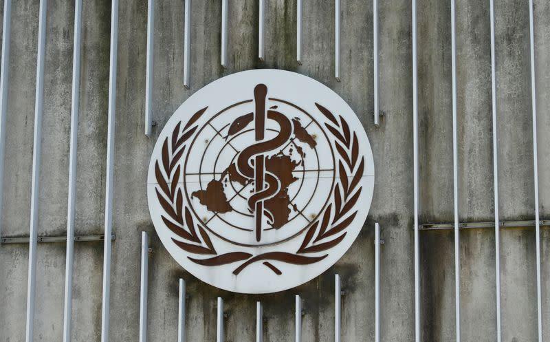 WHO sebut pandemi COVID-19 sebuah gelombang besar bukan musiman