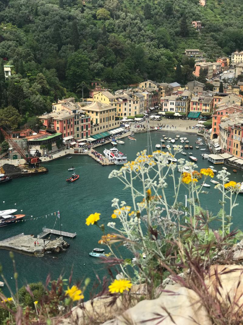 My view from Castello Brown, a 16th century hillside castle looking over Portofino.