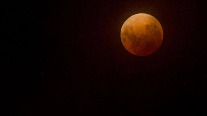 The blood moon will be visible in the early hours of Saturday morning.