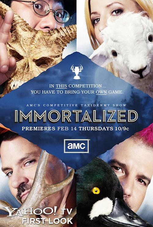 AMC pits taxidermists against each other in new reality competition 'Immortalized' [Exclusive photo]