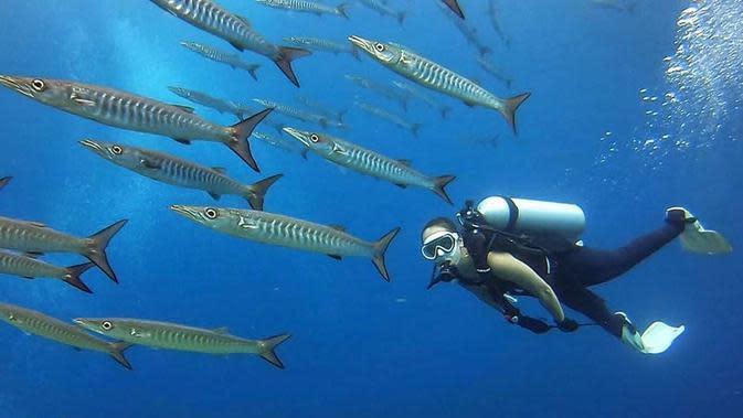 FOTO: Gaya Widika Sidmore saat Diving, Nikmati Pemandangan Bawah Laut