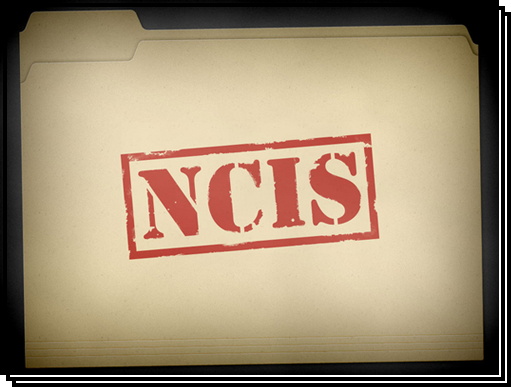 'NCIS' Jargon: Do You Know an MCRT From an MTAC?