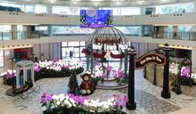 【本地好去處】沙田英倫風聖誕花園 5個英式告白場景+時光郵箱