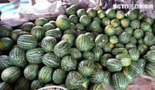 阿公3千顆西瓜遭棄單 花蓮人全買了