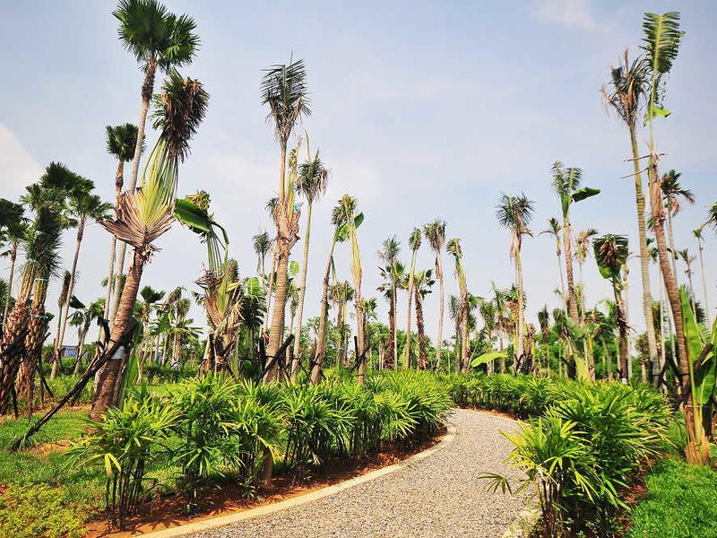 熱帶植物園與紅毛港區自行車路線