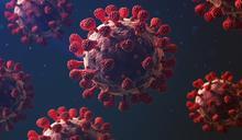 新冠病毒 — 人類在它面前為何如此脆弱