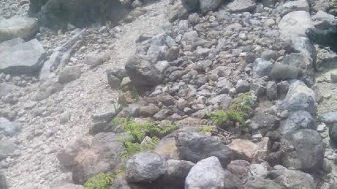 Cerita mistis warnai pencarian turis Jerman yang hilang di Gunung Sibayak (Liputan6.com / Reza Efendi)