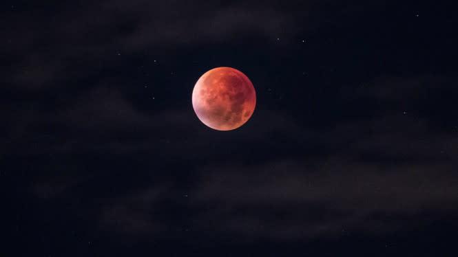 Aktifitas Langit di Bulan Juli, Ada Gerhana Bulan Sebentar Lagi