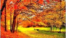 秋分到來 化「悲秋」為「喜秋」