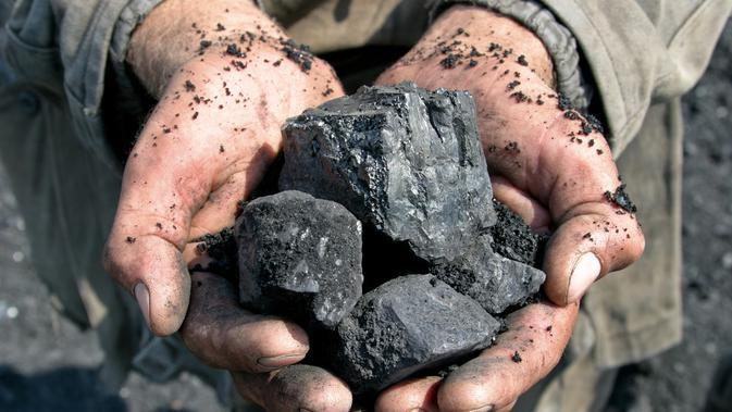 ilustrasi manfaat batu bara untuk kehidupan sehari-hari/Vyacheslav Svetlichnyy/shutterstock