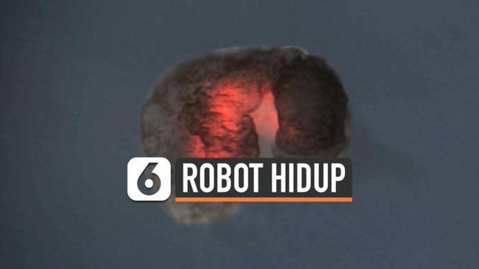 VIDEO: Sel Katak Digunakan untuk Hidupkan Robot