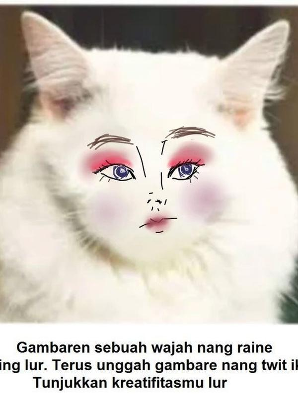 Gambar pada tubuh kucing (Sumber: Twitter/hokihokibento)