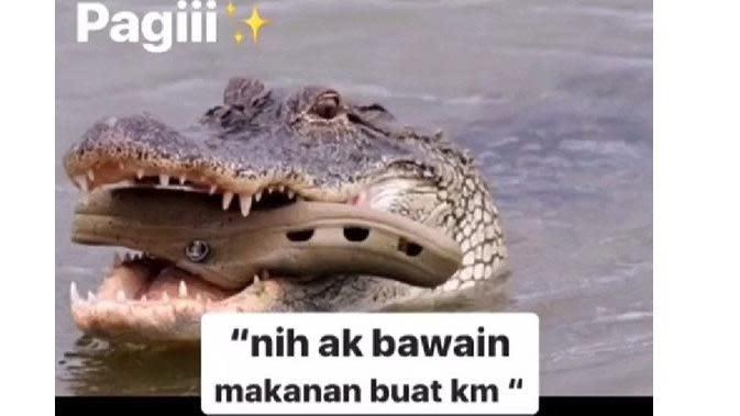 Meme modus buaya betina (Sumber: Twitter/ndukchan)