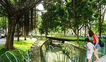 新竹「隆恩圳親水公園」獲國際設計大獎!漂浮月台、磨石子溜滑梯、櫻花榕樹打造最美城市綠洲