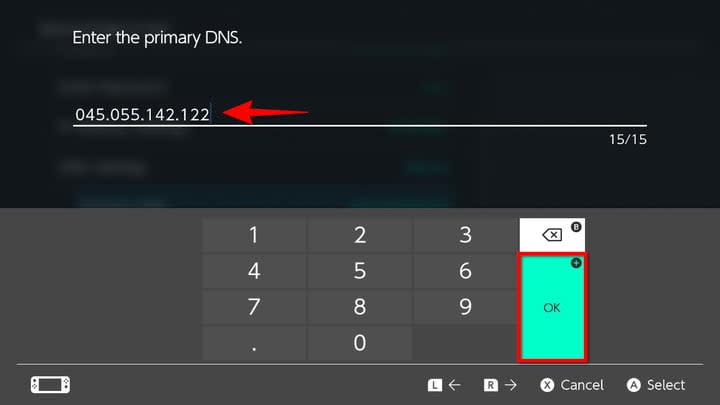 Nintendo Switch change Primary DNS