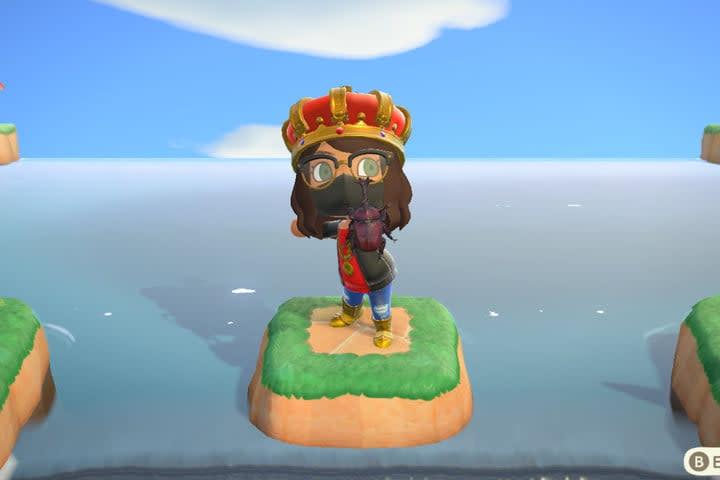 Animal Crossing New Horizons bug