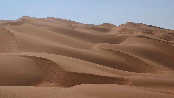 Ilustrasi gurun pasir (Wikipedia)