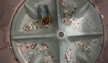 他PO洗衣機慘案照 網譏:煙灰缸?