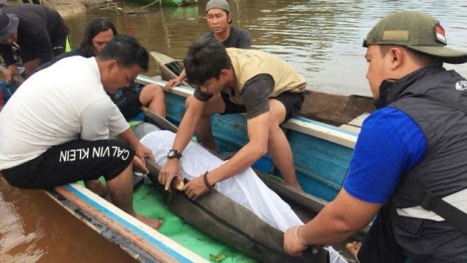 Pesut di Pelalawan Akhirnya Berenang Bebas di Sungai Kampar