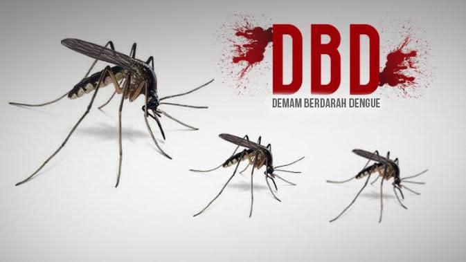 Ilustrasi Demam Berdarah (Liputan6.com/Johan Fatzry)