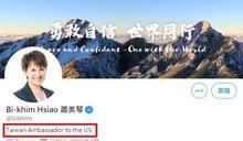 蕭美琴自稱台灣駐美大使,對台國際地位有沒有幫助?