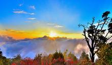 大雪山國家森林遊樂區歡慶35周年 月底推半價優惠