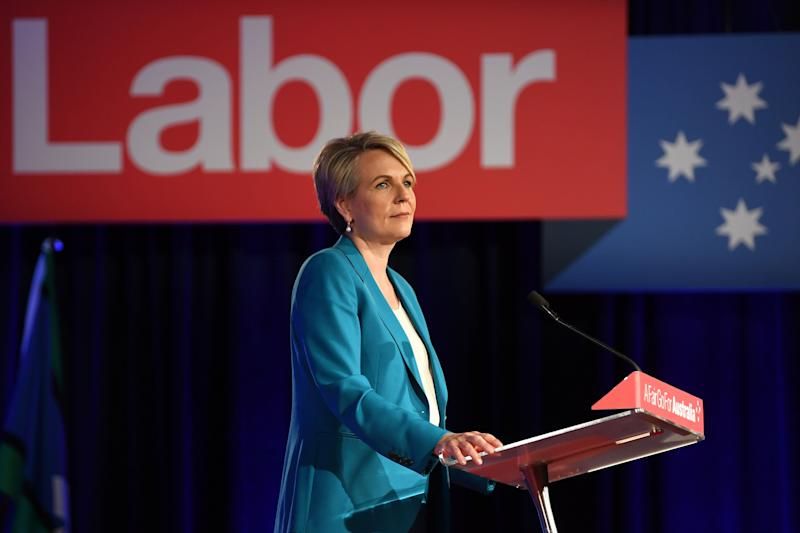 Shadow Employment Minister Tanya Plibersek declared on Monday she won't be running for the role. Source: AAP