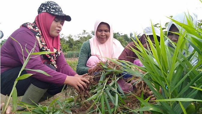 Pembangunan Embung Masih Diperlukan untuk Pertanian