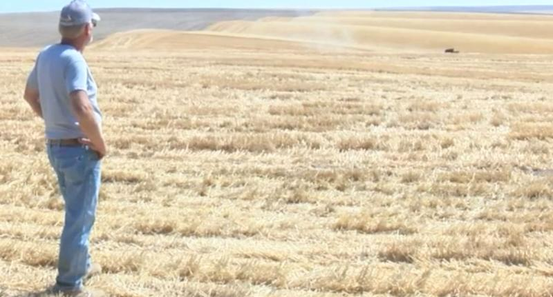 US farmer Larry Yockey's neighbours came together to help him to harvest his crops.