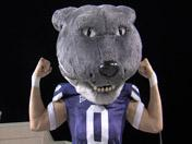 K-State Rebounds To Drop Kent State 37-0