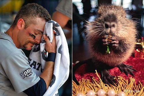 The Juice: 'It's Groundhog Day'; Mariners losing streak reaches 15