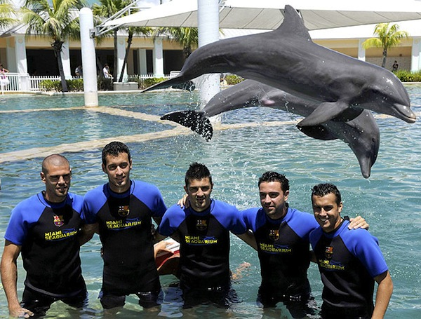 Barcelona get diving lesson from experts