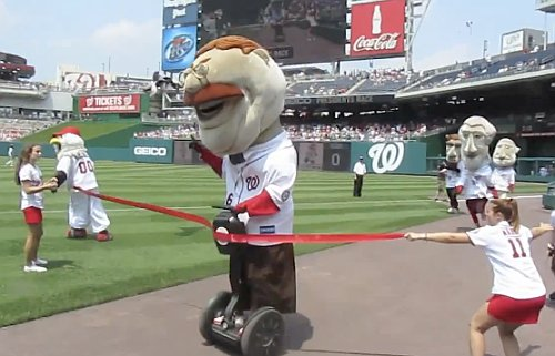 Teddy takes first, but DQ'd for using Segway in presidents race