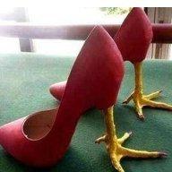 Shoes ♪