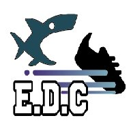 FB粉專請搜尋:E.D.C
