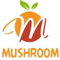 MUSHROOM STORE