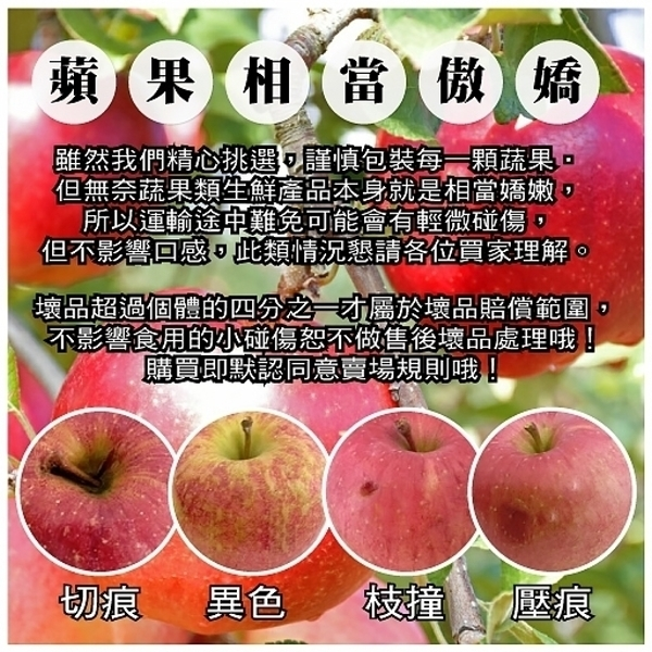 (滿799免運)【天天果園】美國富士蘋果1顆(每顆約180g)