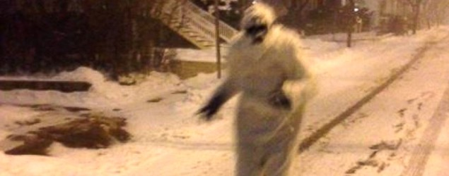 Yeti seen patrolling the streets of Boston